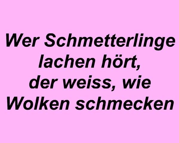 schmetterlinge_3